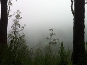 A_rainy_day