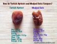 Turkish Apricots versus Medjool Dates