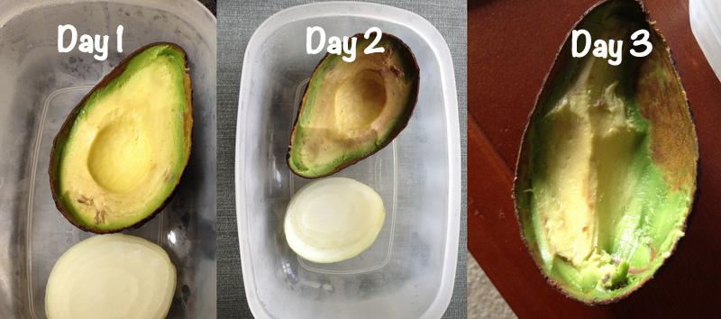 Avocado refrigeration test