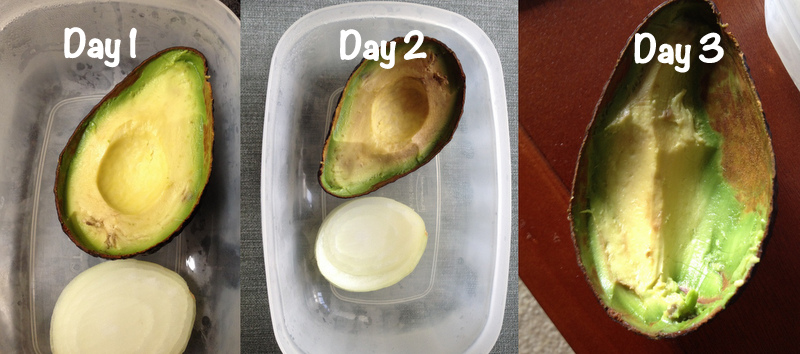 Avocado refrigeration test