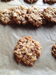 Oatmeal Ginger Cookies